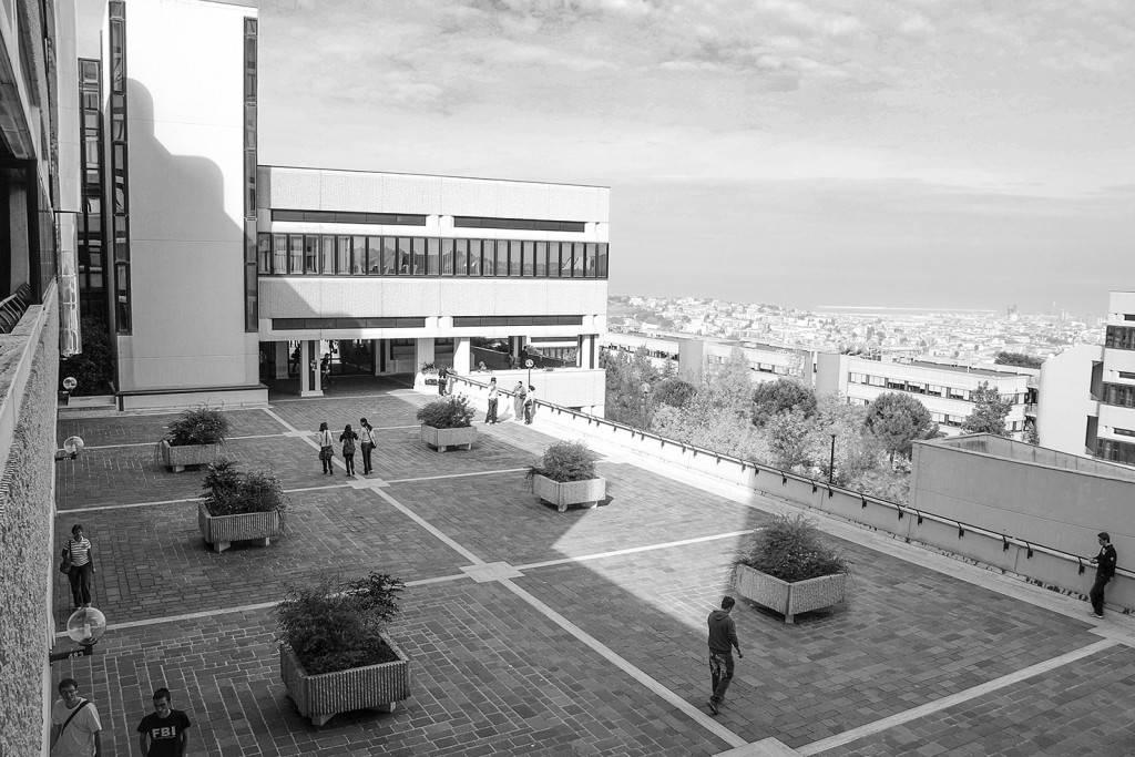 Università Politecnica